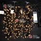 Светодиодная гирлянда Клип Лайт 3 нити по 20м цвет теплый белый постоянное свечение провод черный IP54 24V
